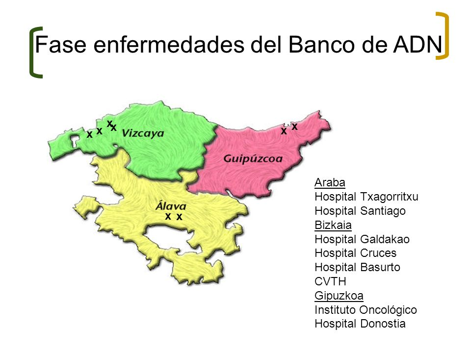 Fase enfermedades del Banco de ADN x xx x x x x Araba Hospital Txagorritxu Hospital Santiago Bizkaia Hospital Galdakao Hospital Cruces Hospital Basurt