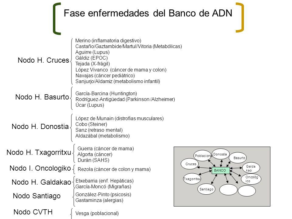 Fase enfermedades del Banco de ADN Nodo H. Cruces Merino (inflamatoria digestivo) Castaño/Gaztambide/Martul/Vitoria (Metabólicas) Aguirre (Lupus) Gáld