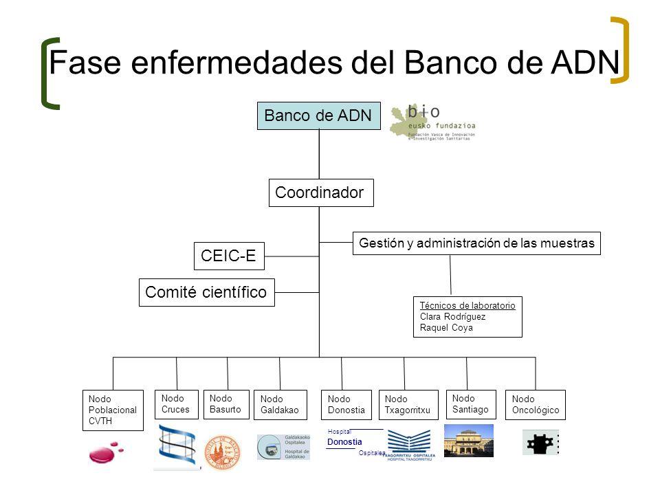 Banco de ADN CEIC-E Comité científico Gestión y administración de las muestras Nodo Poblacional CVTH Nodo Cruces Nodo Basurto Nodo Galdakao Nodo Donos