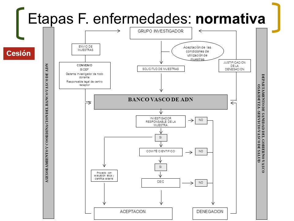 SOLICITUD DE MUESTRAS BANCO VASCO DE ADN INVESTIGADOR RESPONSABLE DE LA MUESTRA SI Proyecto con evaluación ética y científica externa CEIC COMITÉ CIEN