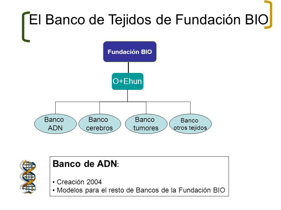 Fundación BIO O+Ehun Banco ADN Banco cerebros Banco tumores Banco otros tejidos El Banco de Tejidos de Fundación BIO Banco de ADN : Creación 2004 Mode