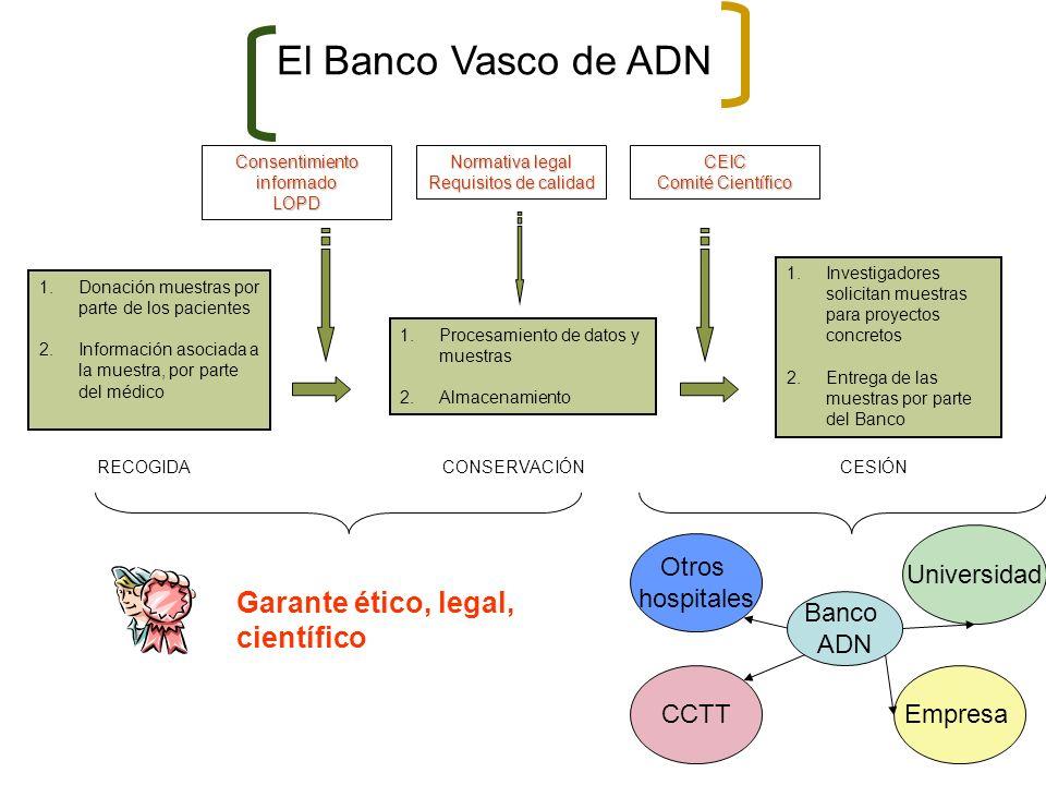 El Banco Vasco de ADN 1.Donación muestras por parte de los pacientes 2.Información asociada a la muestra, por parte del médico 1.Procesamiento de dato