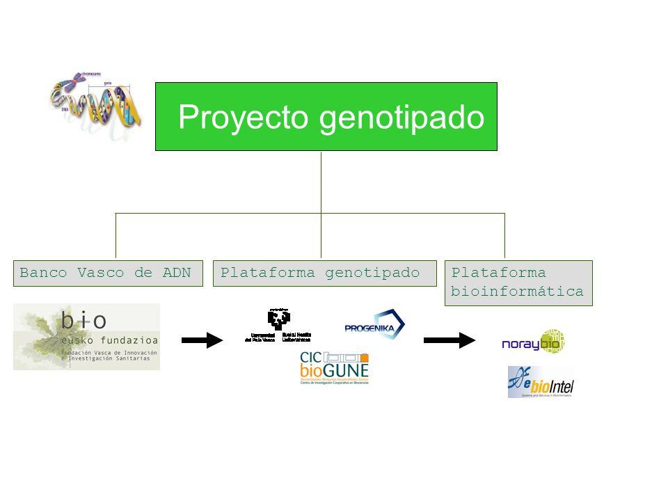 Banco Vasco de ADNPlataforma genotipadoPlataforma bioinformática Proyecto genotipado
