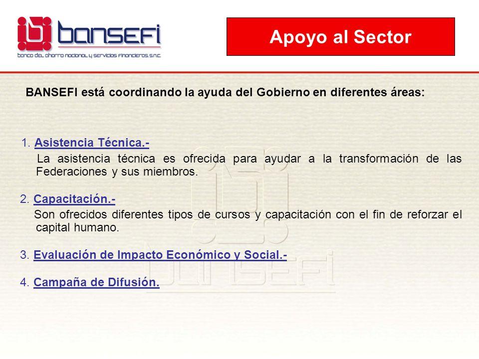 BANSEFI está coordinando la ayuda del Gobierno en diferentes áreas: 1. Asistencia Técnica.- La asistencia técnica es ofrecida para ayudar a la transfo