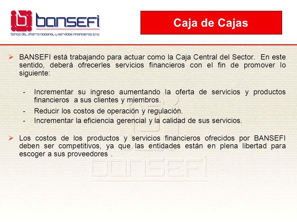 BANSEFI está trabajando para actuar como la Caja Central del Sector. En este sentido, deberá ofrecerles servicios financieros con el fin de promover l