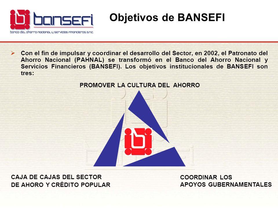 Objetivos de BANSEFI Con el fin de impulsar y coordinar el desarrollo del Sector, en 2002, el Patronato del Ahorro Nacional (PAHNAL) se transformó en
