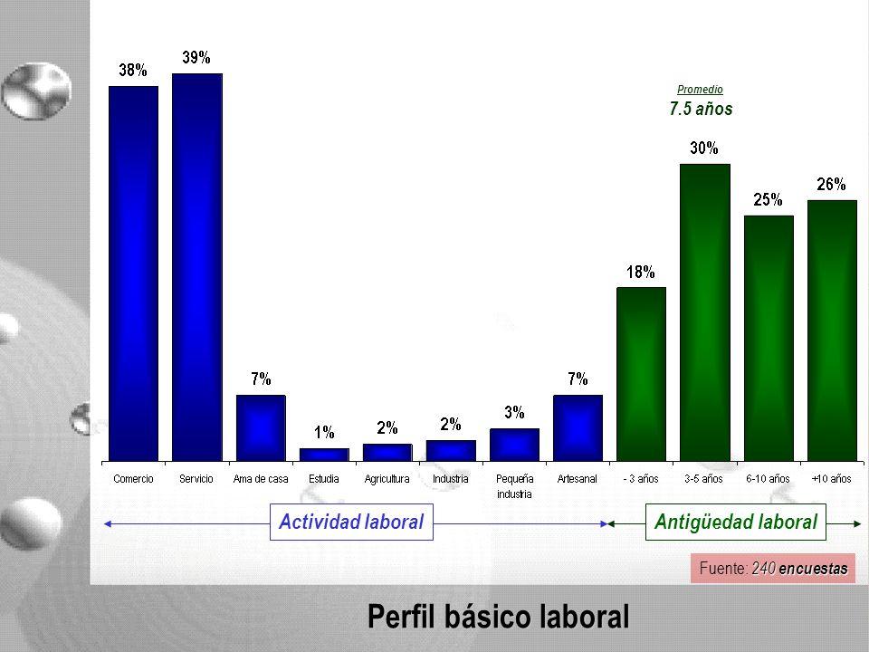 Perfil básico laboral Promedio 7.5 años Actividad laboral Antigüedad laboral 240 encuestas Fuente: 240 encuestas