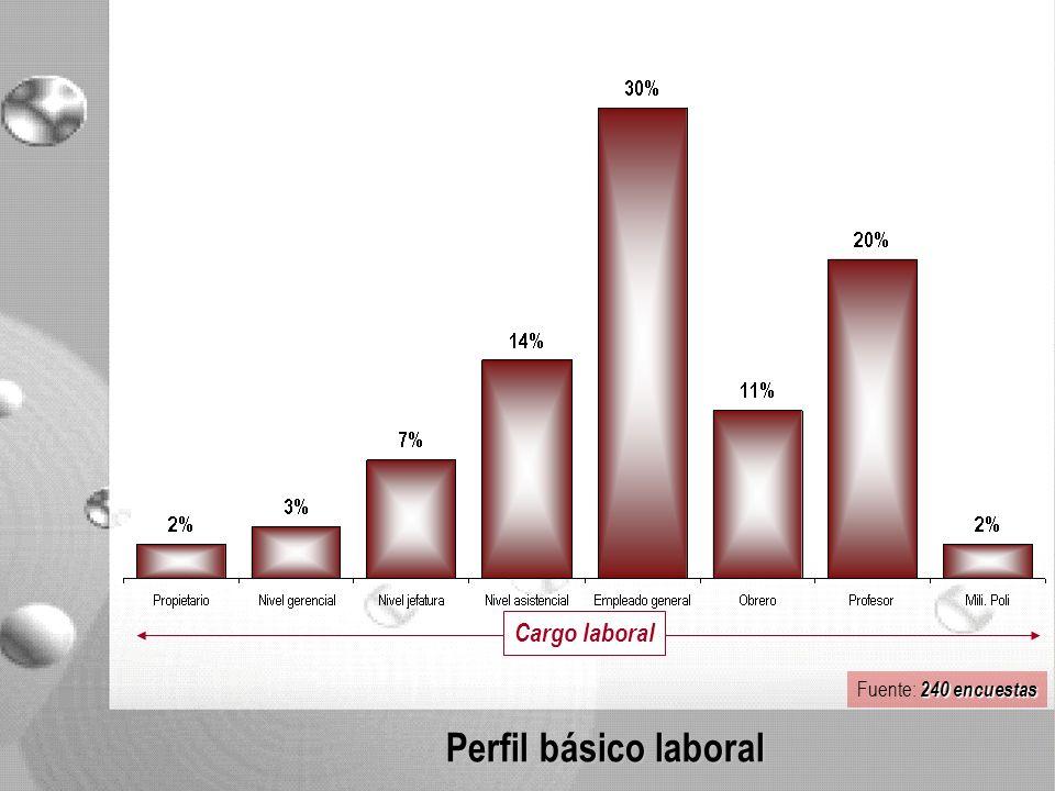 Perfil básico laboral Cargo laboral 240 encuestas Fuente: 240 encuestas