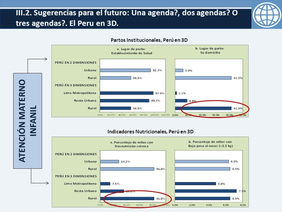 III.2.Sugerencias para el futuro: Una agenda?, dos agendas.
