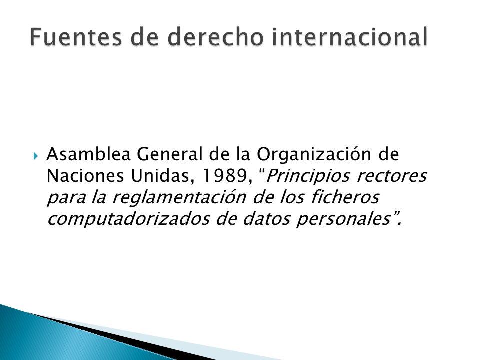 Asamblea General de la Organización de Naciones Unidas, 1989, Principios rectores para la reglamentación de los ficheros computadorizados de datos personales.