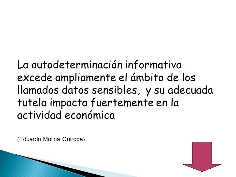 La autodeterminación informativa excede ampliamente el ámbito de los llamados datos sensibles, y su adecuada tutela impacta fuertemente en la actividad económica (Eduardo Molina Quiroga).