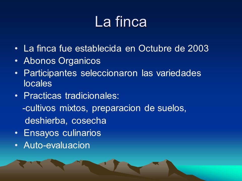 La finca La finca fue establecida en Octubre de 2003 Abonos Organicos Participantes seleccionaron las variedades locales Practicas tradicionales: -cul