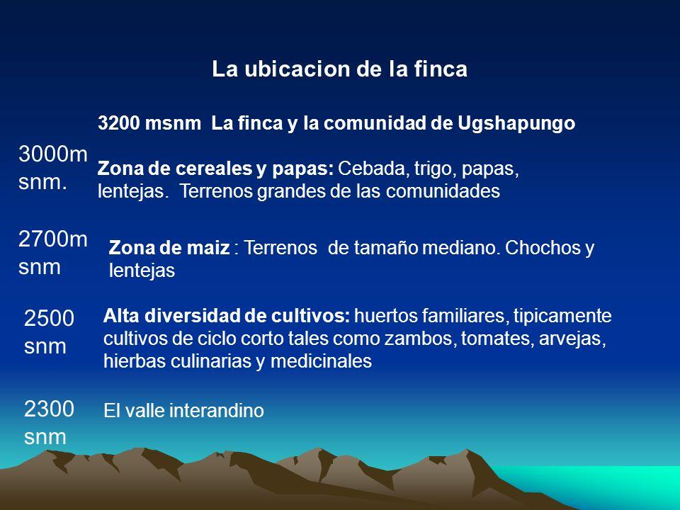 3000m snm. 2700m snm 2500 snm 3200 msnm La finca y la comunidad de Ugshapungo Zona de cereales y papas: Cebada, trigo, papas, lentejas. Terrenos grand