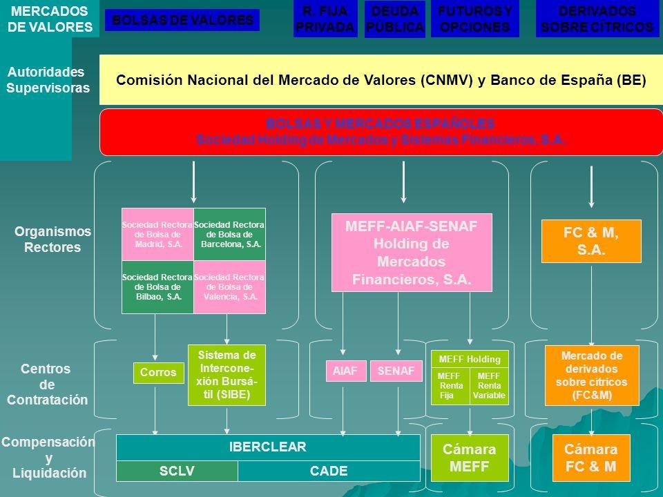 Comisión Nacional del Mercado de Valores (CNMV) y Banco de España (BE) Autoridades Supervisoras BOLSAS Y MERCADOS ESPAÑOLES Sociedad Holding de Mercad