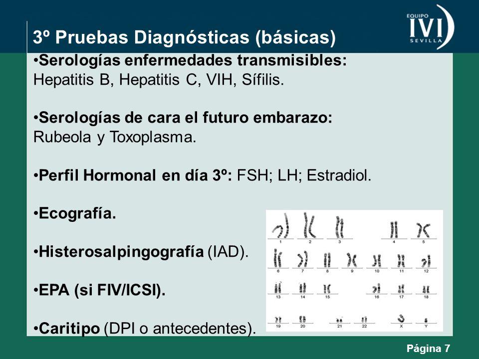 3º Pruebas Diagnósticas (básicas) Serologías enfermedades transmisibles: Hepatitis B, Hepatitis C, VIH, Sífilis. Serologías de cara el futuro embarazo