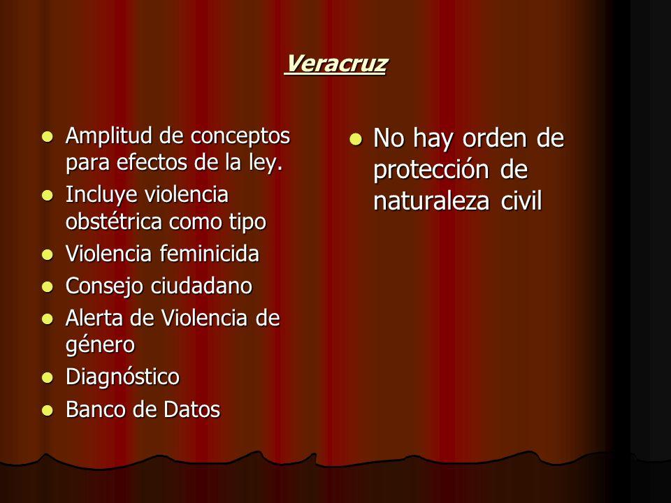 Veracruz Amplitud de conceptos para efectos de la ley. Amplitud de conceptos para efectos de la ley. Incluye violencia obstétrica como tipo Incluye vi
