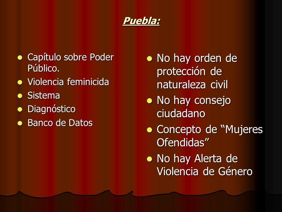 Puebla: Capítulo sobre Poder Público. Capítulo sobre Poder Público. Violencia feminicida Violencia feminicida Sistema Sistema Diagnóstico Diagnóstico