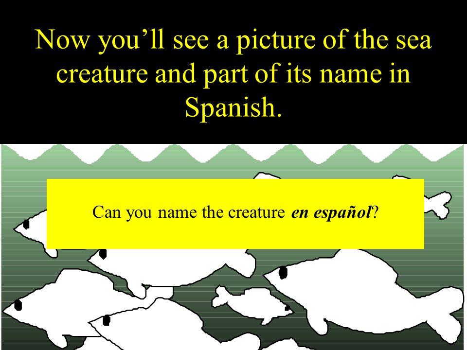 el pez En el acuario, vamos a ver...