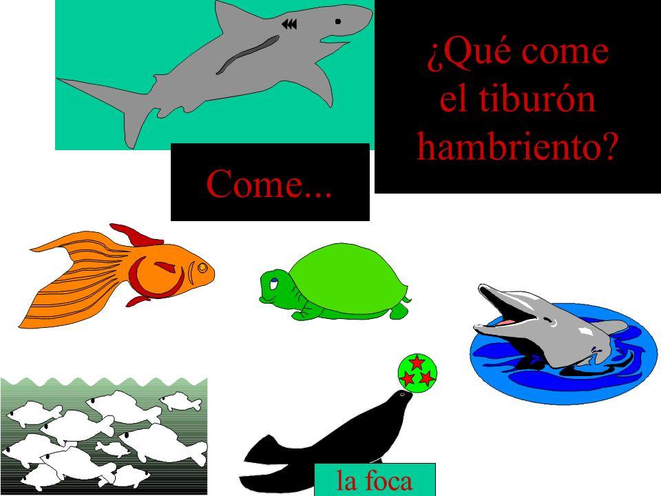 ¿Qué come el tiburón hambriento? el pez Come...