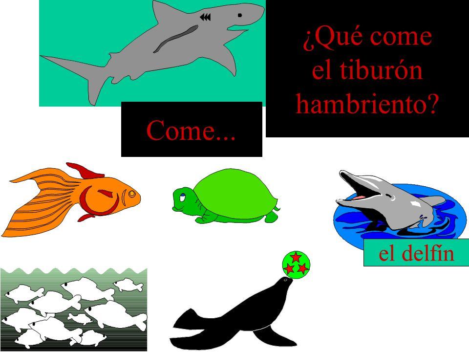 ¿Qué come el tiburón hambriento? El banco de peces Come...