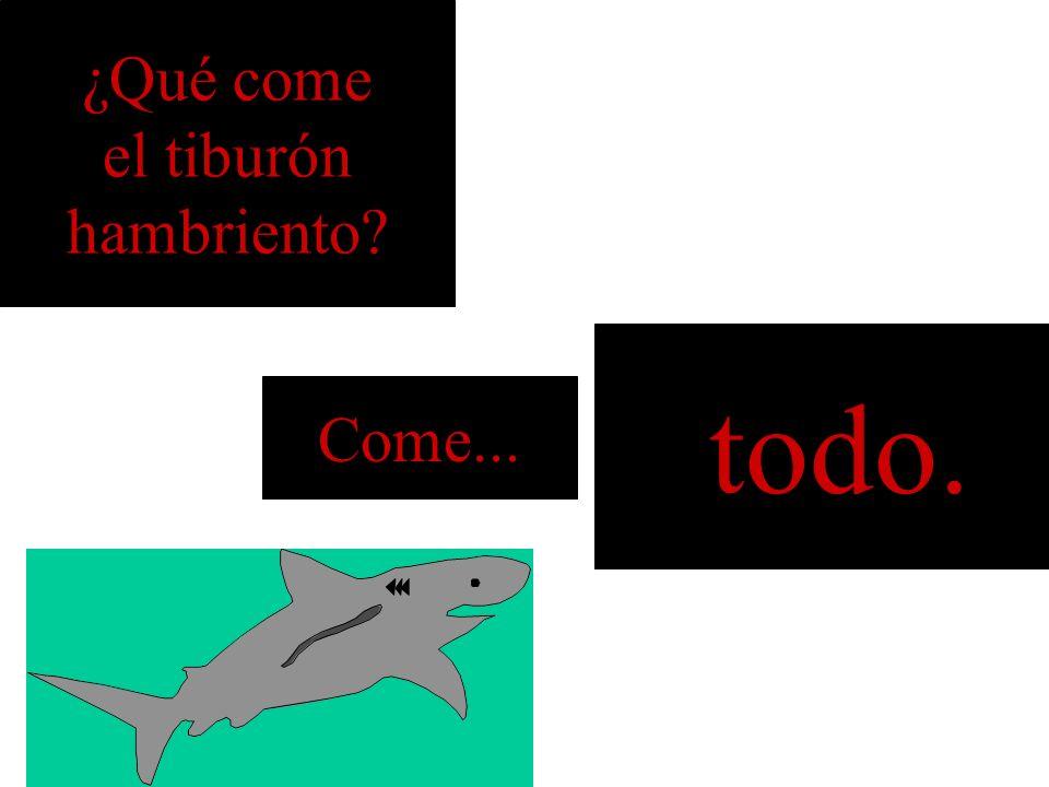 ¿Qué come el tiburón hambriento? el delfín Come...