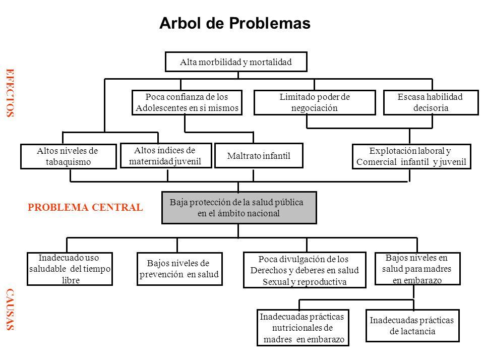 PROBLEMA CENTRAL Arbol de Problemas Alta morbilidad y mortalidad Altos índices de maternidad juvenil Maltrato infantil Baja protección de la salud púb
