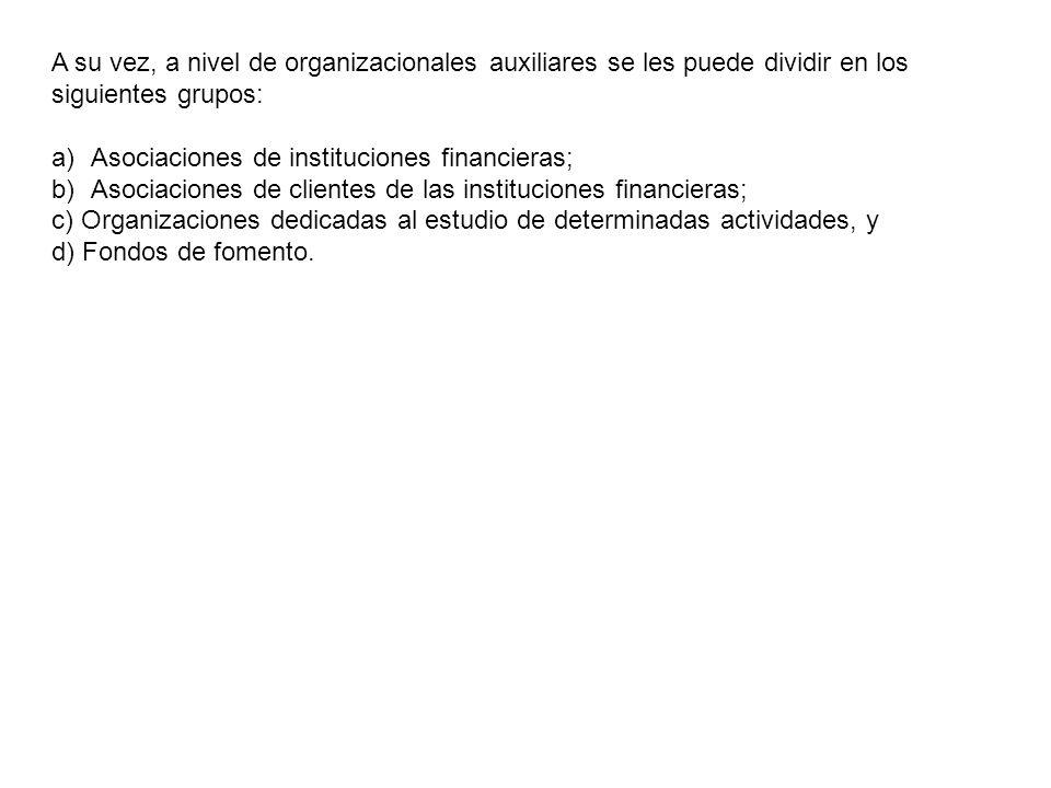 A su vez, a nivel de organizacionales auxiliares se les puede dividir en los siguientes grupos: a)Asociaciones de instituciones financieras; b)Asociac