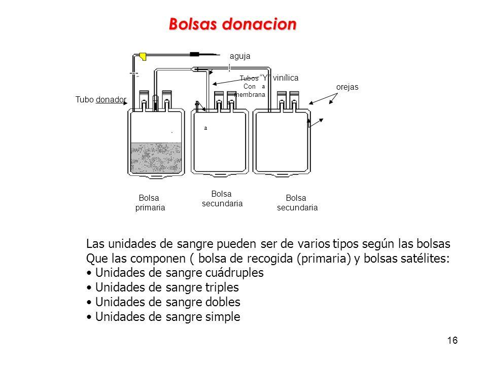 16 Bolsas donacion Bolsa primaria Tubos Con membrana Y vinílica aguja Tubo donador Bolsa secundaria Bolsa secundaria orejas ª ª ª Las unidades de sang