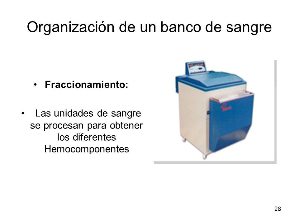 28 Organización de un banco de sangre Fraccionamiento: Las unidades de sangre se procesan para obtener los diferentes Hemocomponentes