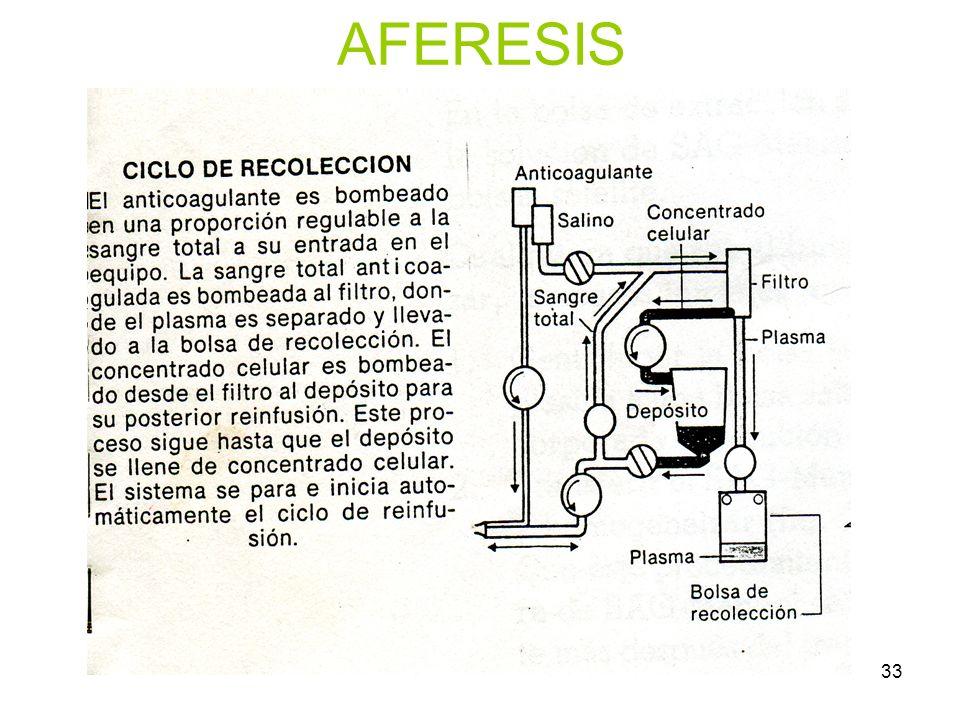 33 AFERESIS