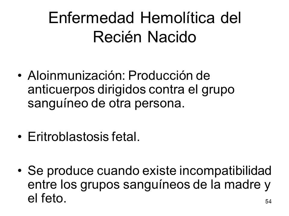 54 Enfermedad Hemolítica del Recién Nacido Aloinmunización: Producción de anticuerpos dirigidos contra el grupo sanguíneo de otra persona. Eritroblast