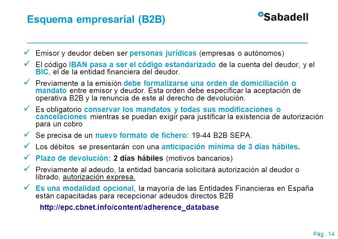 Pág.. 14 Esquema empresarial (B2B) Emisor y deudor deben ser personas jurídicas (empresas o autónomos) El código IBAN pasa a ser el código estandariza