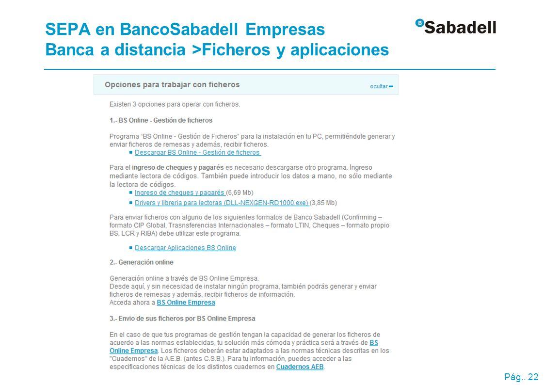 Pág.. 22 SEPA en BancoSabadell Empresas Banca a distancia >Ficheros y aplicaciones