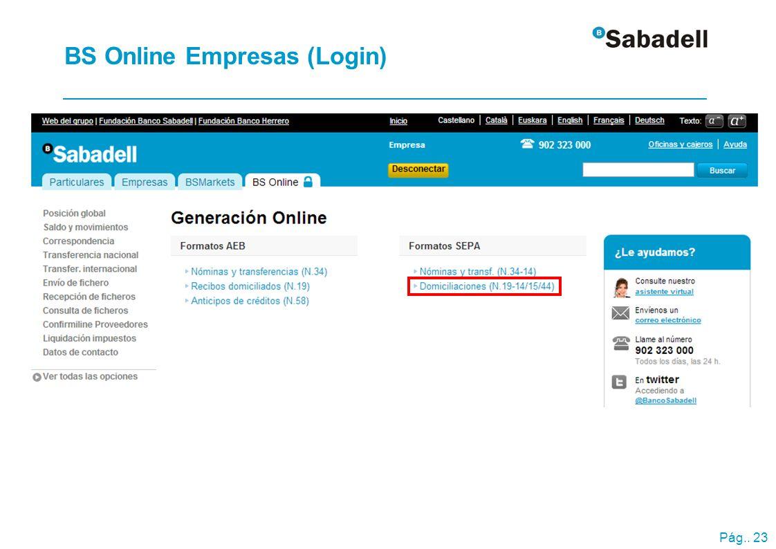 Pág.. 23 BS Online Empresas (Login)