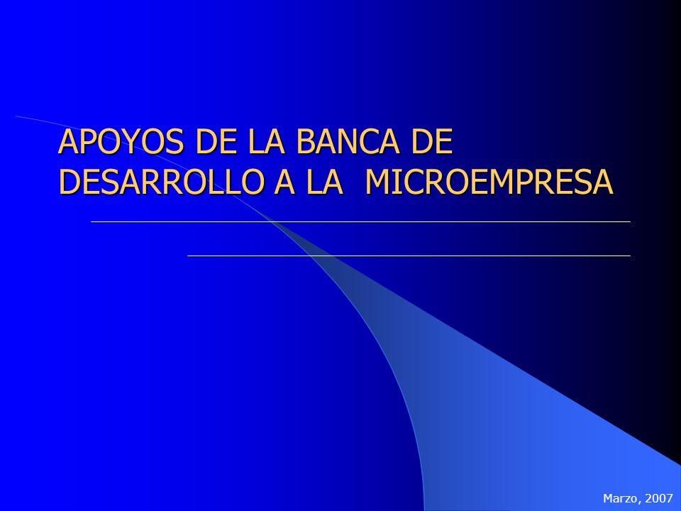 APOYOS DE LA BANCA DE DESARROLLO A LA MICROEMPRESA Marzo, 2007
