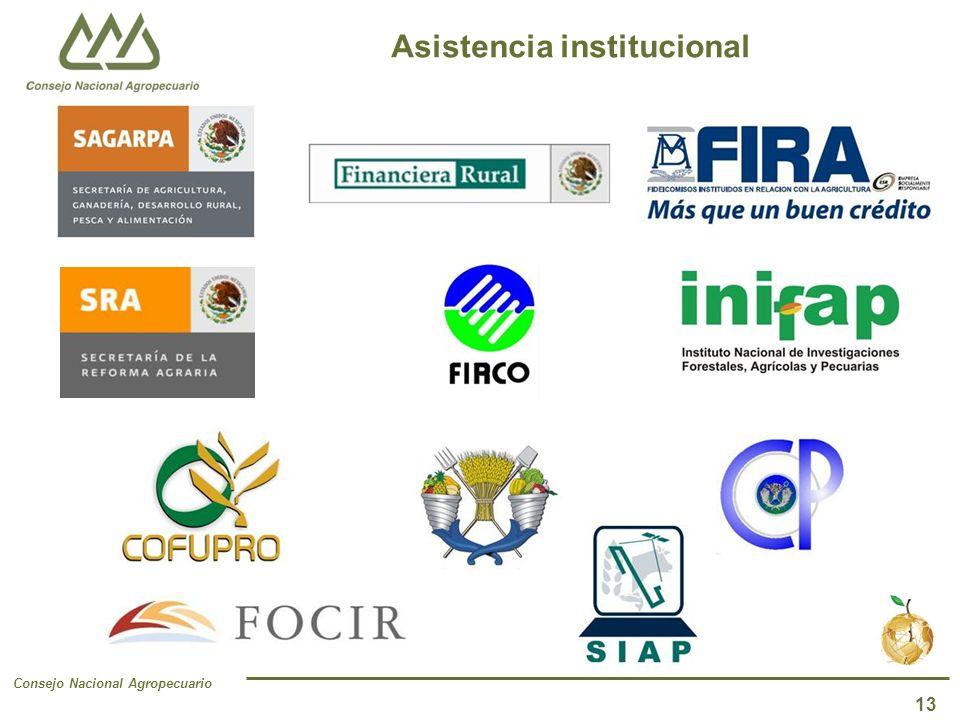 Consejo Nacional Agropecuario 13 Asistencia institucional