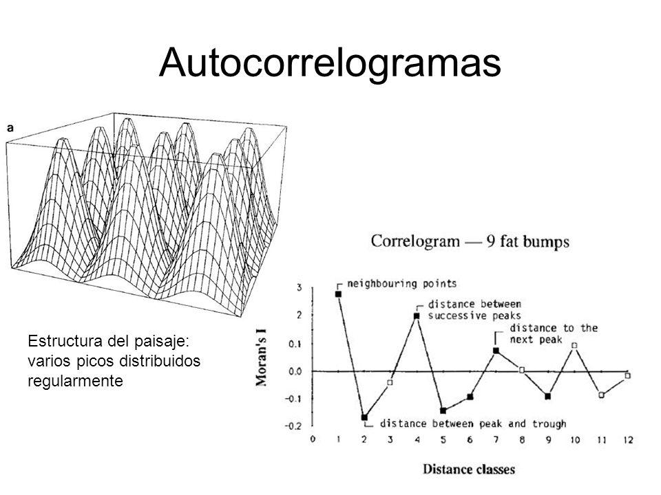 Autocorrelogramas Estructura del paisaje: varios picos distribuidos regularmente