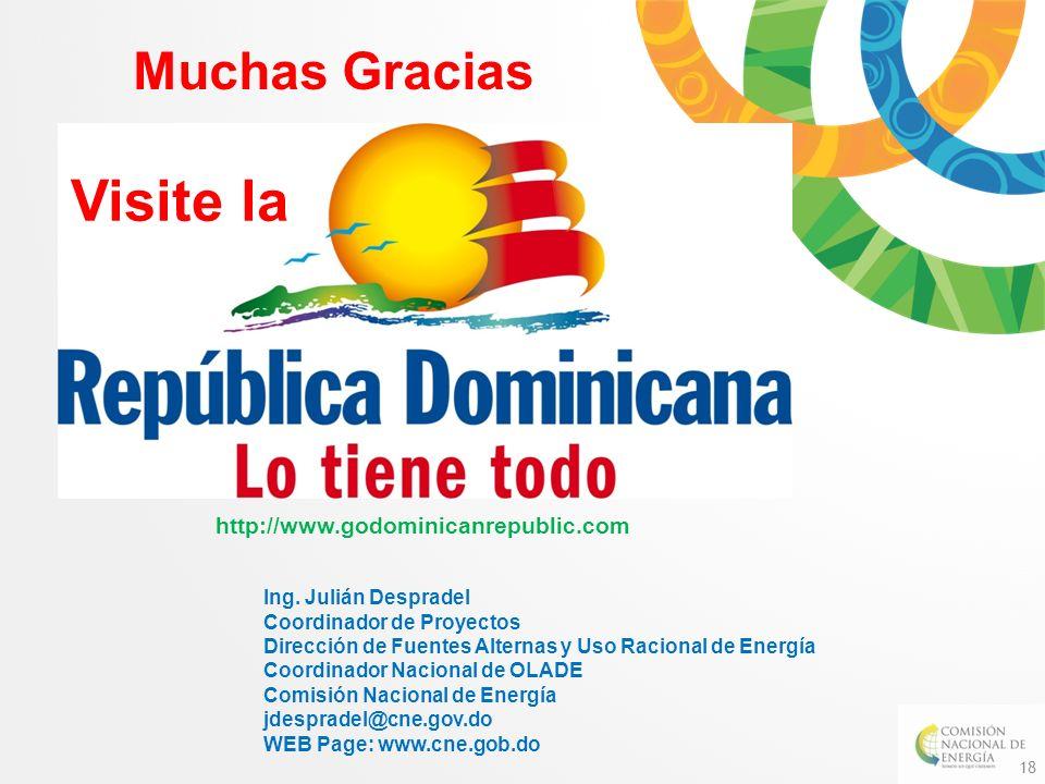 18 Muchas Gracias Visite la http://www.godominicanrepublic.com Ing. Julián Despradel Coordinador de Proyectos Dirección de Fuentes Alternas y Uso Raci