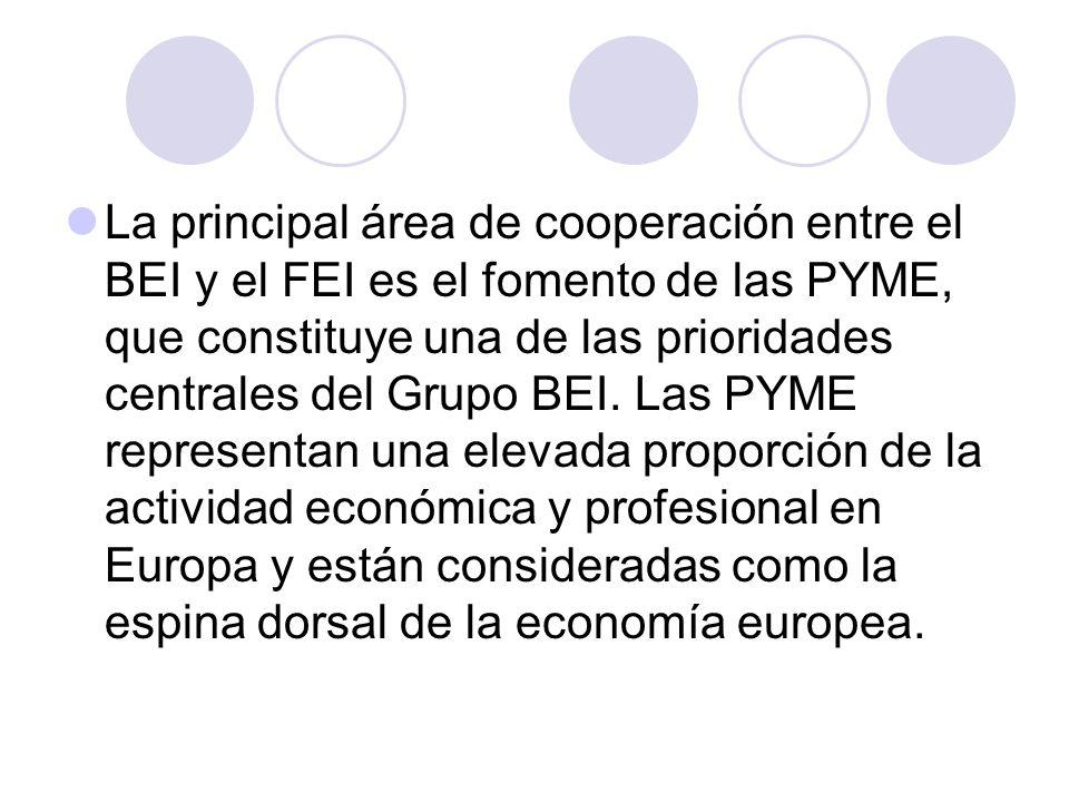 La principal área de cooperación entre el BEI y el FEI es el fomento de las PYME, que constituye una de las prioridades centrales del Grupo BEI. Las P