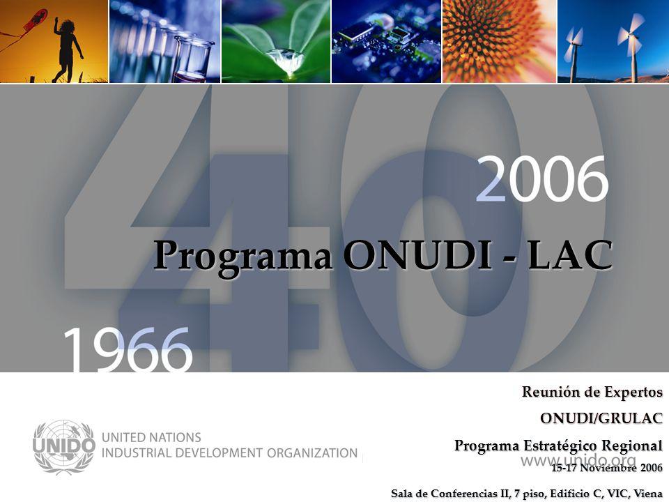 www.unido.org Programa ONUDI - LAC Reunión de Expertos ONUDI/GRULAC Programa Estratégico Regional 15-17 Noviembre 2006 Sala de Conferencias II, 7 piso