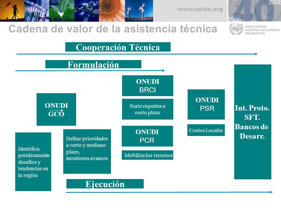 www.unido.org Cadena de valor de la asistencia técnica ONUDI GCO Define prioridades a corto y mediano plazo, monitorea avances Identifica peridicament