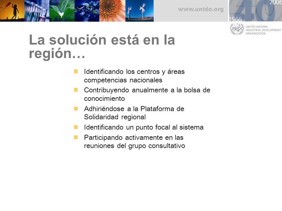 www.unido.org La solución está en la región… Identificando los centros y áreas competencias nacionales Contribuyendo anualmente a la bolsa de conocimi
