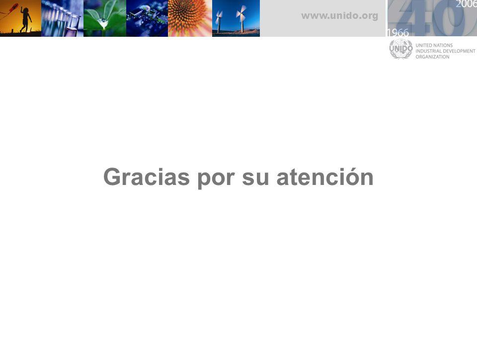 www.unido.org Gracias por su atención