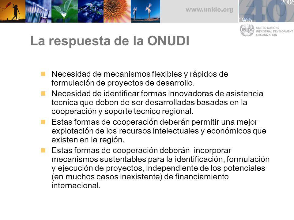 www.unido.org La respuesta de la ONUDI Necesidad de mecanismos flexibles y rápidos de formulación de proyectos de desarrollo. Necesidad de identificar