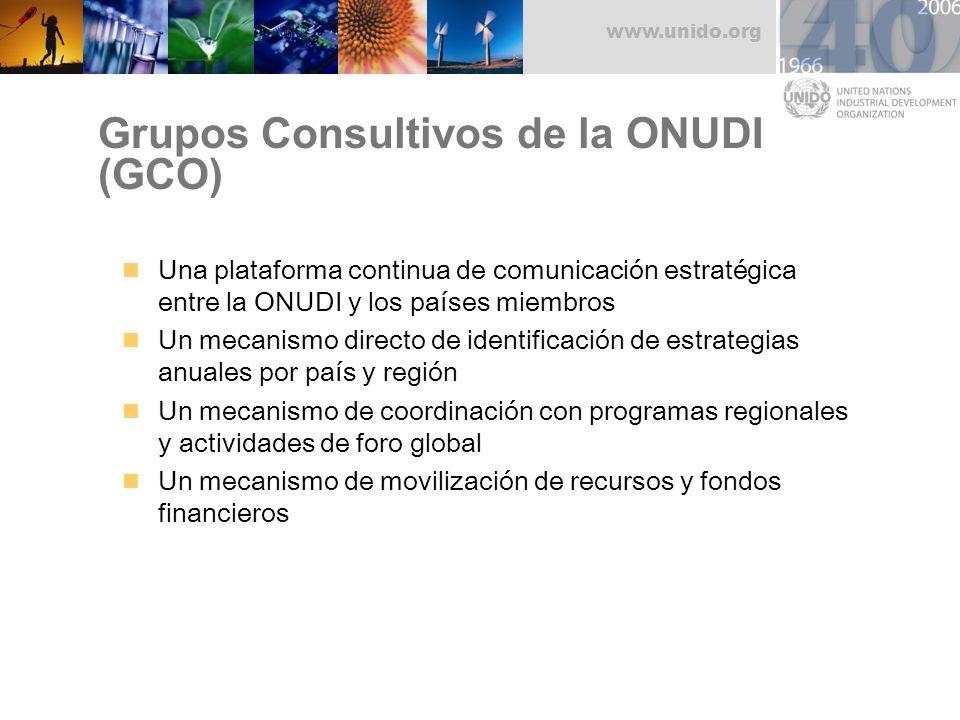 www.unido.org Grupos Consultivos de la ONUDI (GCO) Una plataforma continua de comunicación estratégica entre la ONUDI y los países miembros Un mecanis