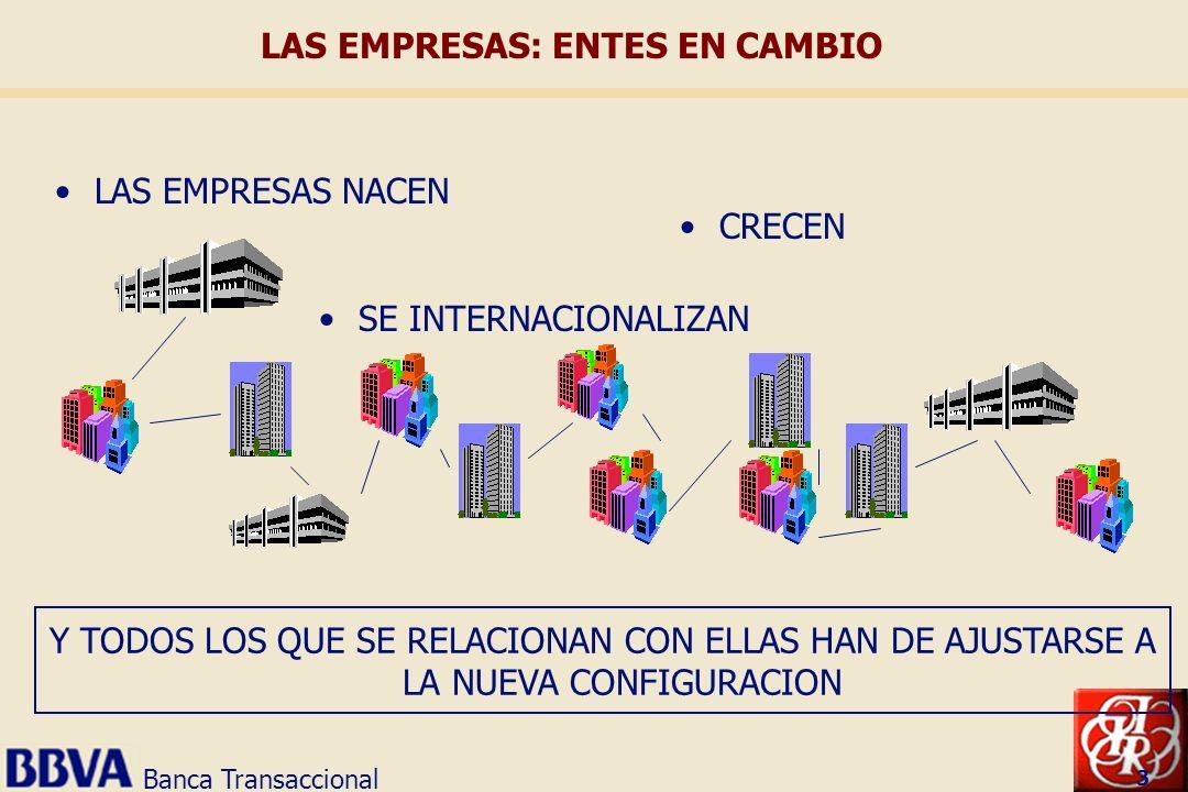 Banca Transaccional 3 LAS EMPRESAS NACEN CRECEN SE INTERNACIONALIZAN Y TODOS LOS QUE SE RELACIONAN CON ELLAS HAN DE AJUSTARSE A LA NUEVA CONFIGURACION