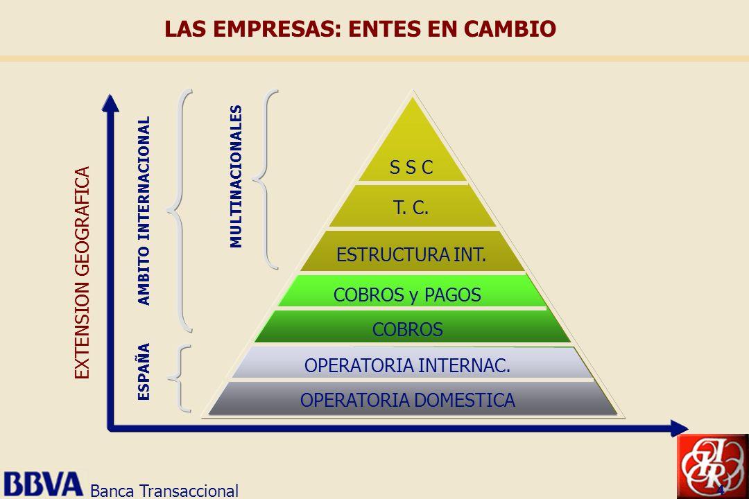 Banca Transaccional 4 MULTINACIONALES AMBITO INTERNACIONAL ESPAÑA S S C T. C. ESTRUCTURA INT. COBROS y PAGOS COBROS OPERATORIA INTERNAC. OPERATORIA DO