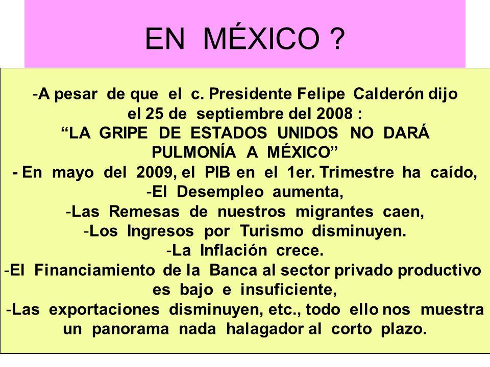 EN MÉXICO ? -A pesar de que el c. Presidente Felipe Calderón dijo el 25 de septiembre del 2008 : LA GRIPE DE ESTADOS UNIDOS NO DARÁ PULMONÍA A MÉXICO