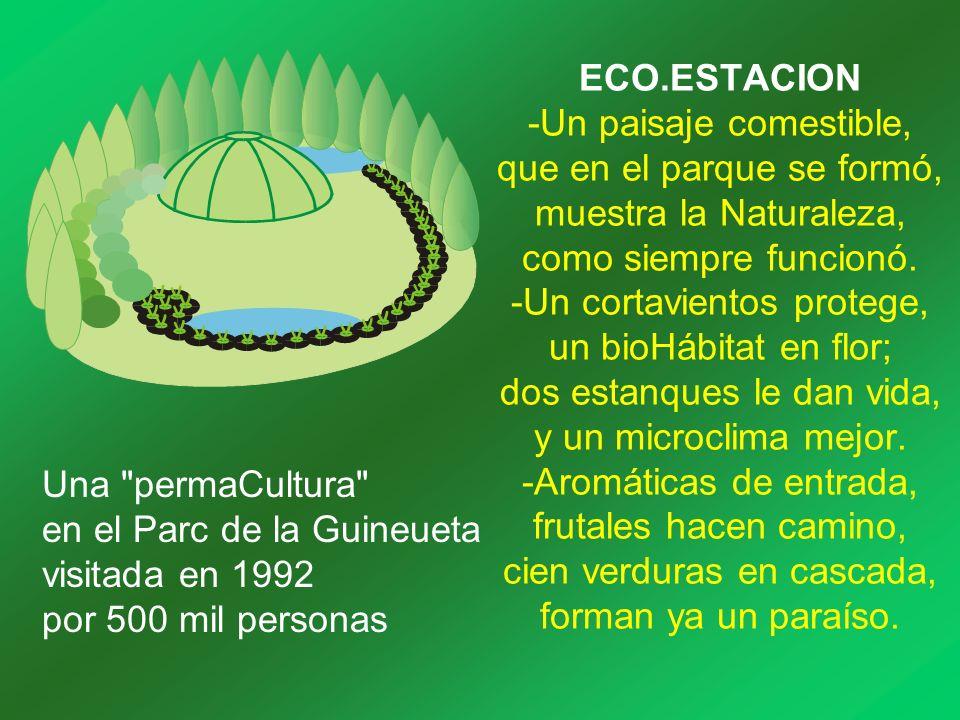 ECO.ESTACION -Un paisaje comestible, que en el parque se formó, muestra la Naturaleza, como siempre funcionó. -Un cortavientos protege, un bioHábitat