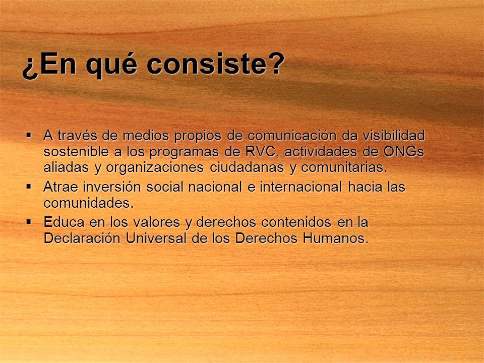 Componentes Internet Ciudadano -Perspectiva Ciudadana, publicación digital de actualización diaria desde Enero de 2001.